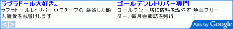 googlead468-60